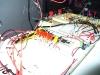 Debugging LEDs, processor, relays, and sensing circuitry