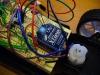 Xbee Wireless and Turn Motor